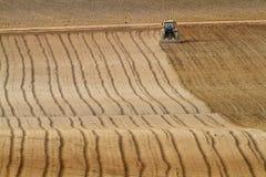 Трактор - поле Стоковое Изображение