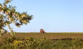 трактор поля старый стоковое фото