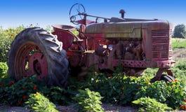 трактор поля Стоковые Изображения