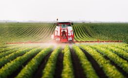 Трактор распыляя поле стоковая фотография