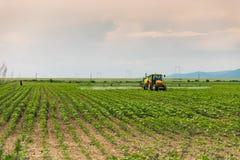 Трактор сельского хозяйства Стоковая Фотография