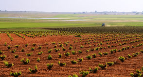 Трактор сельского хозяйства Стоковое Изображение RF