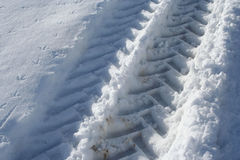 трактор следа снежка Стоковая Фотография RF