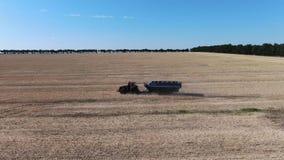 Трактор с трейлером управляет через поле сурепки на солнечный день сток-видео