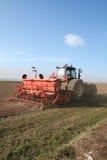 трактор хавроньи семени Стоковая Фотография RF