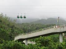 Трамваи на лесе стоковое изображение rf