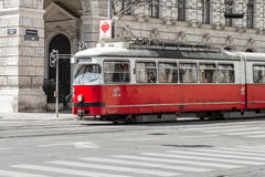 Трамвай вены Стоковое Фото