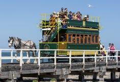 Трамвай лошади вычерченный в южной Австралии стоковые фотографии rf