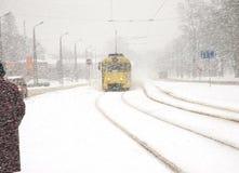 трам Стоковая Фотография