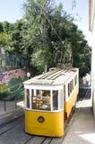 трам gloria Стоковое Фото