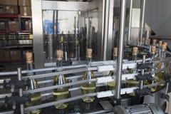 Транспортер для продукции игристого вина Стоковое Фото