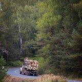 Транспорт журналов подготовленных на дороге леса Стоковое фото RF