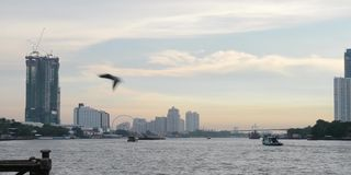 Транспорт на Chao Реке Phraya, Бангкоке, Таиланде акции видеоматериалы