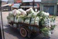 Транспорт овощей Стоковые Изображения RF