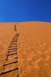 трап пустыни Стоковые Фотографии RF
