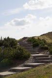 трап холма к Стоковые Изображения RF