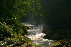 Трасса реки Стоковое Фото