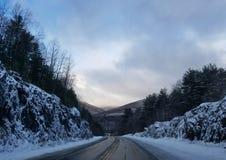 Трасса США деревьев управляя водителем грузовика образа жизни стоковое изображение rf