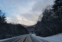 Трасса США деревьев управляя водителем грузовика образа жизни стоковые фото
