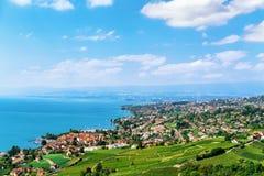 Трасса террасы виноградника Lavaux пешая в Швейцарии Стоковые Изображения