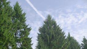Трассировка самолета в небе видеоматериал