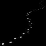 Трассировка собаки водя далеко Стоковые Фотографии RF
