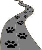Трассировка собак на дороге Стоковые Фото