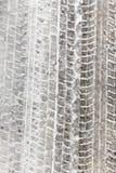 Трассировки автомобиля на снеге Стоковые Фотографии RF
