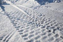 Трассировки автошин автомобиля на снеге Стоковые Изображения RF