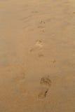 Трассировки босых ног на пляже песка Стоковое Изображение RF