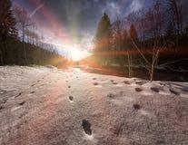 Трассировки диких животных на снеге около реки Стоковая Фотография RF