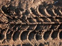 Трассировки катят внутри грязь Стоковые Фото