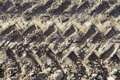 Трассировки катят внутри грязь Стоковое фото RF
