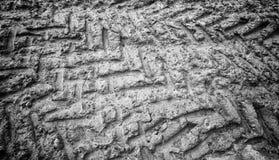 Трассировки катят внутри грязь Стоковая Фотография