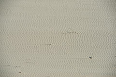 Трассировки дюн стоковое фото