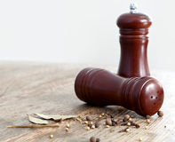 трасучки соли перца деревянные Стоковое фото RF