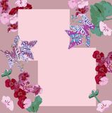 Pattern, flower, floral, seamless, abstract, butterfly, decoration, pink, flowers, design, illustration, nature, white, red, art,. Bright colorful butterfly card royalty free illustration