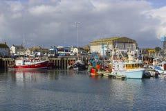 Траулеры в малой гавани в деревне полуострова Ards Portavogie в графстве вниз, Северная Ирландия Стоковые Фотографии RF
