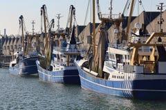 Траулеры рыбной ловли в гавани Scheveningen, Голландии стоковое изображение rf