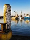 траулеры рыболовства Стоковое Изображение RF
