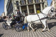 Традиционная верховая езда в Fiaker через центр города внутри стоковое изображение rf