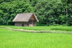 Традиционная деревня в Японии Стоковые Изображения RF