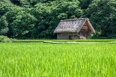 Традиционная деревня в Японии Стоковая Фотография