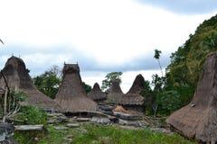 Традиционная деревня людей Sumbanese стоковые фотографии rf