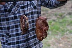 Традиционная копченая ветчина Стоковая Фотография