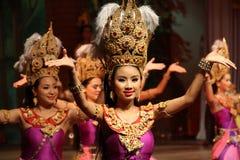 Традиционная тайская выставка в саде Nongnooch в Паттайя, Таиланде Стоковое Фото
