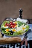 Традиционная французская среднеземноморская тарелка кухни, салат Nicoise Стоковые Изображения RF