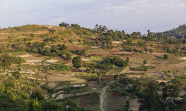 Традиционное земледелие террасы людей Dorze Около деревни Hayzo стоковые фото