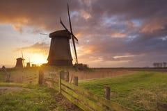 Традиционные голландские ветрянки на восходе солнца в Нидерландах Стоковые Изображения