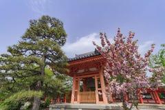 Традиционные красные висок и цветение вишневого дерева Стоковые Изображения RF